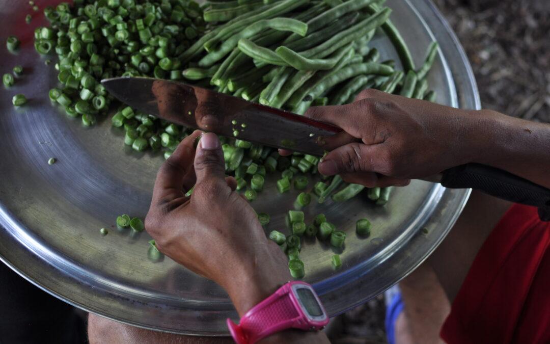 Análisis del abordaje del derecho humano a la alimentación y nutrición adecuadas en la propuesta de plan nacional de desarrollo 2018-2022