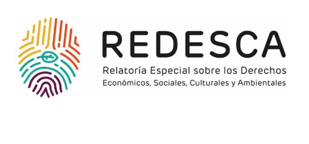 IV Informe anual de la Relatoría Especial sobre Derechos Económicos, Sociales, Culturales y Ambientales de la CIDH
